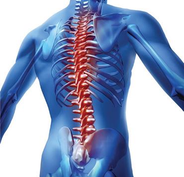 Osteopaths Treat